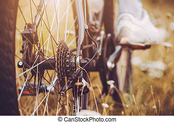Rear racing bike cassette on the wheel with chain and foot
