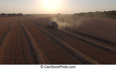 harvester threshing wheat and become dusty.