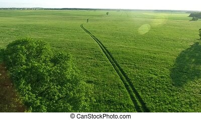 aerial view of road in the fields - aerial view of road in...