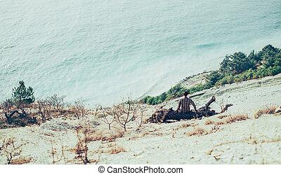 Man sitting on snag on coastline - Young man sitting on snag...