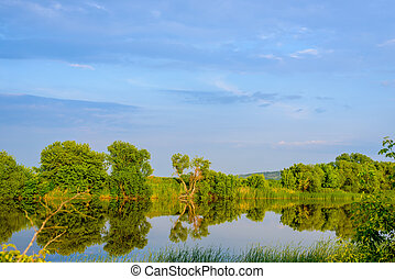 Tranquil rural lake in evening light - Tranquil rural lake...