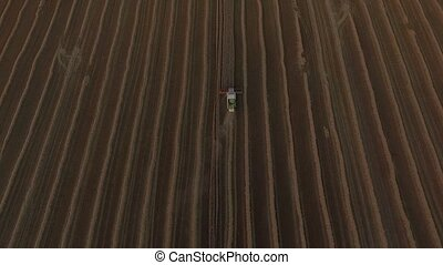 Combines threshing wheat top view