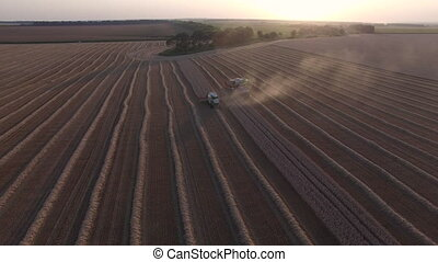 Combaines harvesters threshing wheat aerial view.