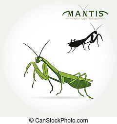 Green Mantis Vector - Beetle praying mantis isolated on a...
