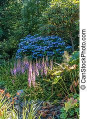 Blue Flowers Landscape 2