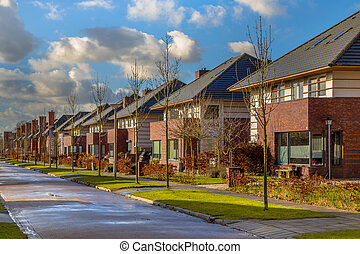 Detached family houses in a quiet street - Detached dutch...