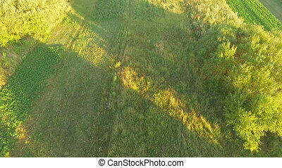 Aerial view of Ukrainian fields at sunset - Aerial view:...