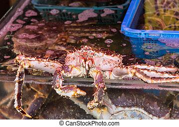 king crabs in Hakodate morning market - Taraba sea king...