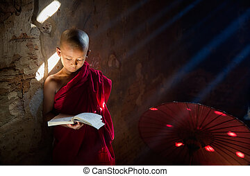 Young Buddhist monk reading and study in , sitting in pagoda...