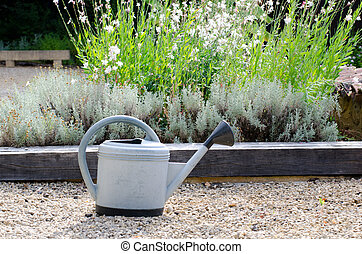 Watering can - watering can in the garden