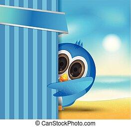 blue bird summer holiday