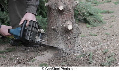 Worker cut a tree by chainsaw. Forest care