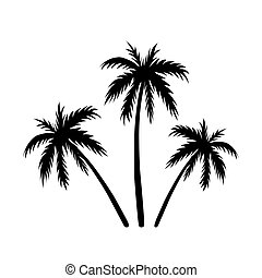 Three palms sketch