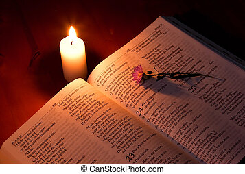 Bible by candle light on wooden table with small flower