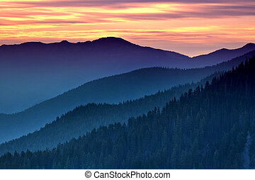 Layers of the Dream - Distant view from Hurricane Ridge,...