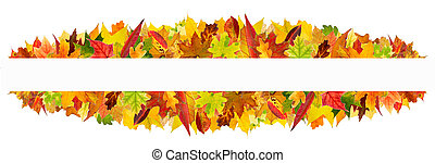 Autumn leaves frame - Colorful autumn leaves frame, isolated...