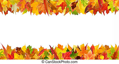 Autumn leaves frame - Colorful autumn different leaves...