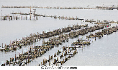 The coop for feeding fish in east of Thailand sea