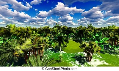 Tropical jungle animation - Lush exotic vegetation in...