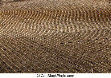plowed agricultural land - plowed and ready for sowing...