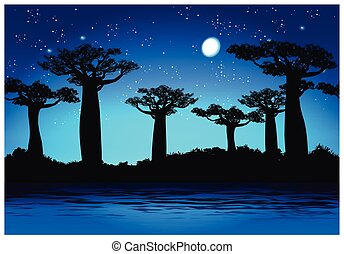 Baobab trees At night - Vector illustration Baobab trees at...