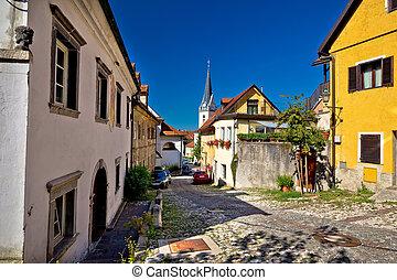 Cobbled old steet of Ljubljana, capital of Slovenia
