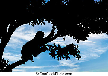 Sloth animal on the tree against the sky