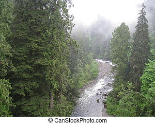 Capilano Suspension Bridge View in Vancouver, Canada