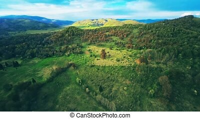 Green forest nature aerial shot - Copter aerial view of the...