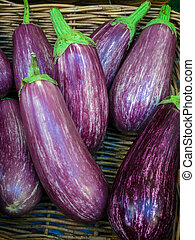 Group of Ripe Aubergines for Sale
