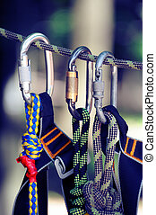 Climbing sports image of a carabiner on a rope in a forest