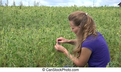 young woman eat fresh green pea in field at summertime. 4K -...