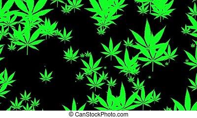 Flying cannabis leafs on black