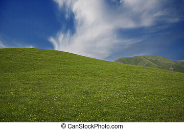 Green hill and blue sky in a summer day