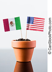 flags of mexico and the united states in a plant pot