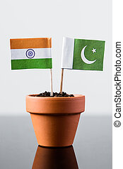 flags of pakistan and india in a plant pot