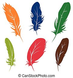 Beautiful feathers of birds isolated on white background. Vector illustration.