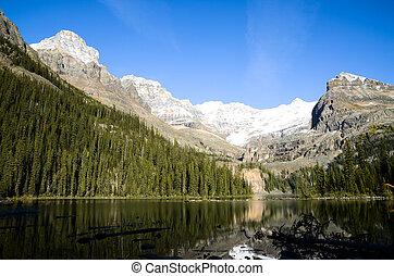 Autumn Scenery of Lake O'Hara, Yoho National Park, Canadian Rockies