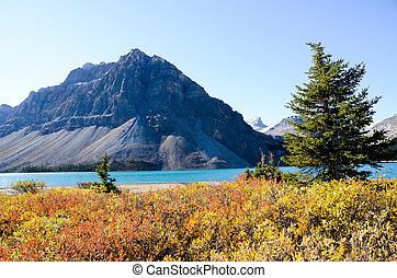 Bow Lake in Autumn, Canadian Rockies