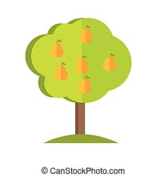 Pear Tree vector illustration in flat style design - Pear...