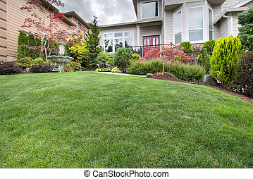 Green Grass Lawn in Manicured Frontyard Garden - Green Grass...