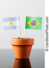 flags of argentinia and brazil - flags of argentina and...