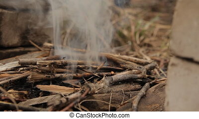 Flames of wood ember with small twigs. - Flames of wood...