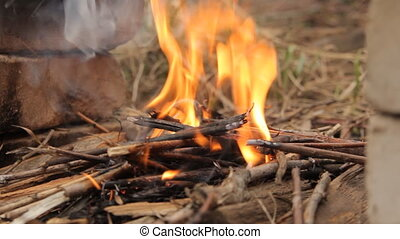 Flaming bonfire with small twigs. - Flames of wood ember for...