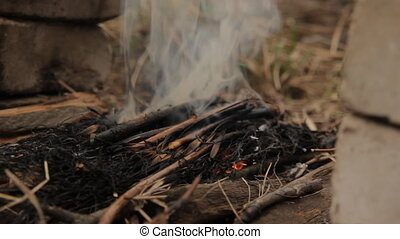 Flames of wood ember. With burned dry hay. - Flames of wood...