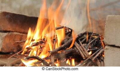 Burning wooden logs with hand. - Burning wooden logs with...