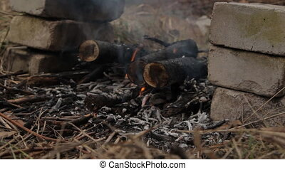 Burning wooden logs with flash fire. - Burning wooden logs...
