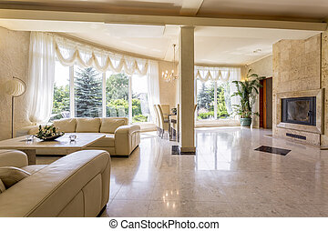 Impressive lounge room displaying the owner's wealth -...