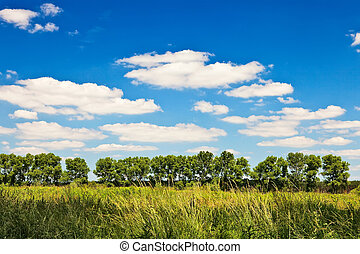 Countryside landscape with blue sky and clouds on sunny day.