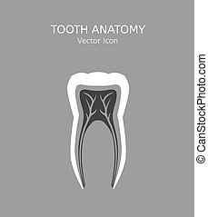 Tooth vector icon - Tooth icon vector illustration. Medical...